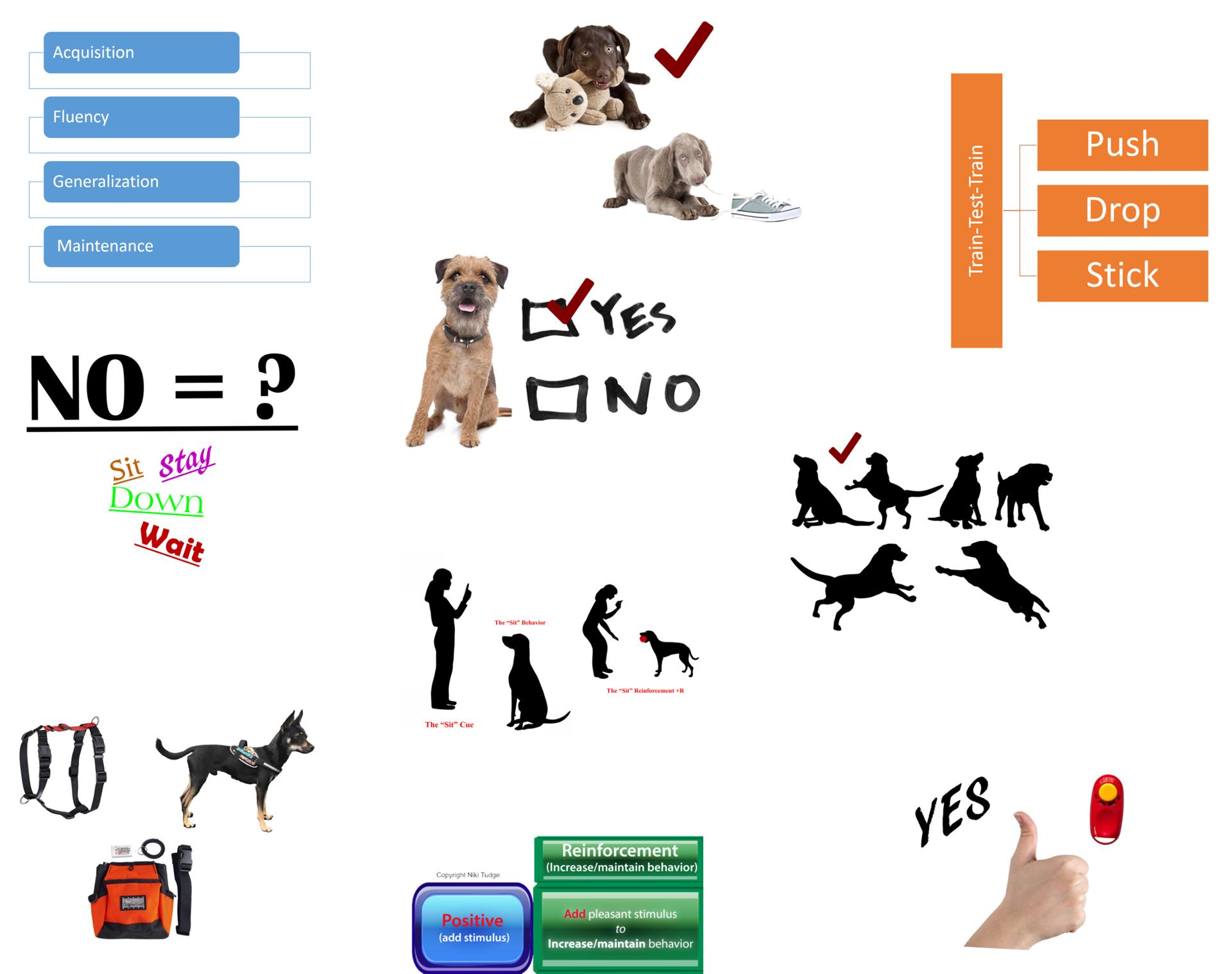 Pet Professional Guild Australia - Webinars - On Demand