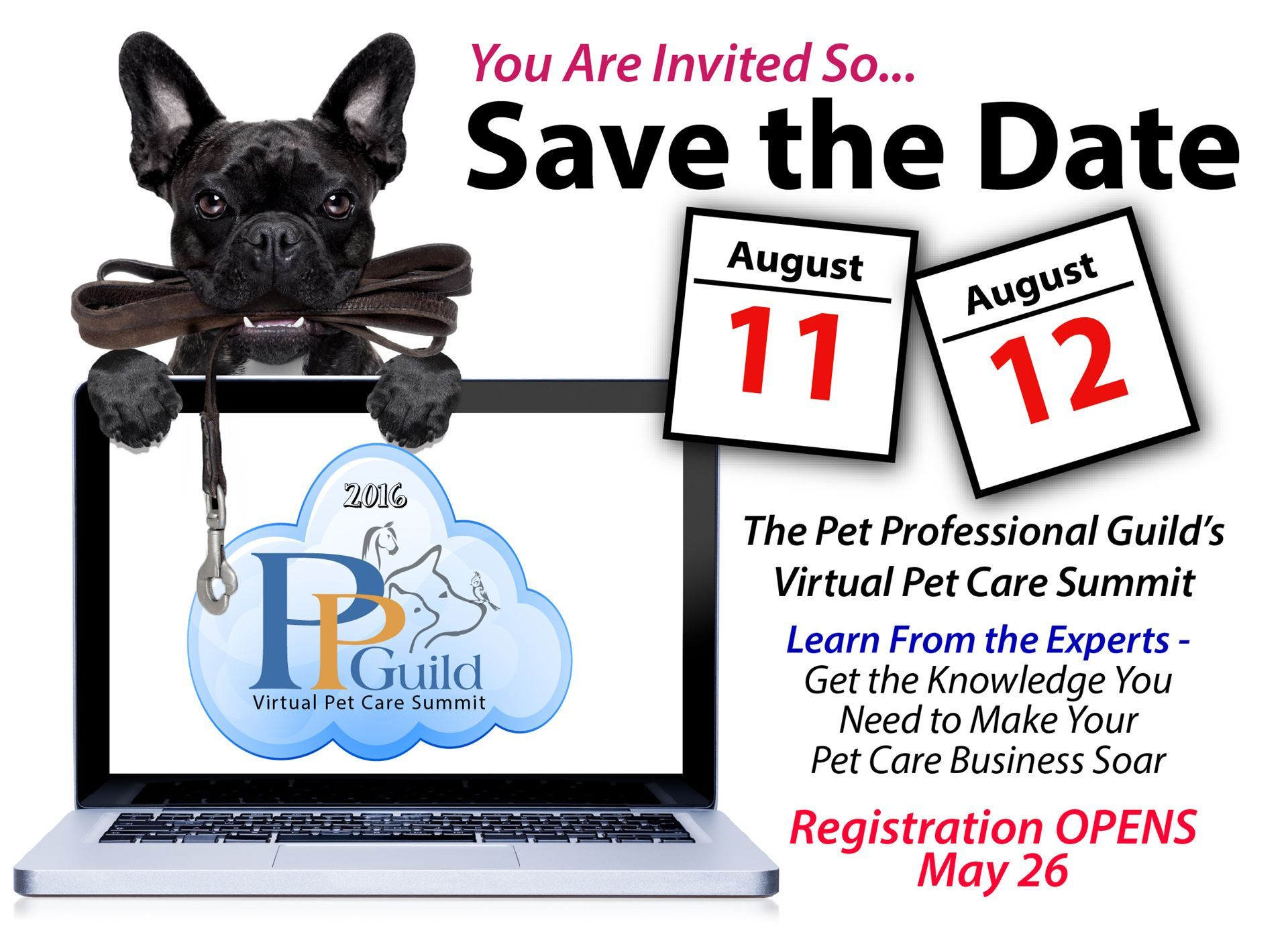Your 2016 Virtual Pet Care Summit