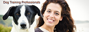 Dog Training Professionals